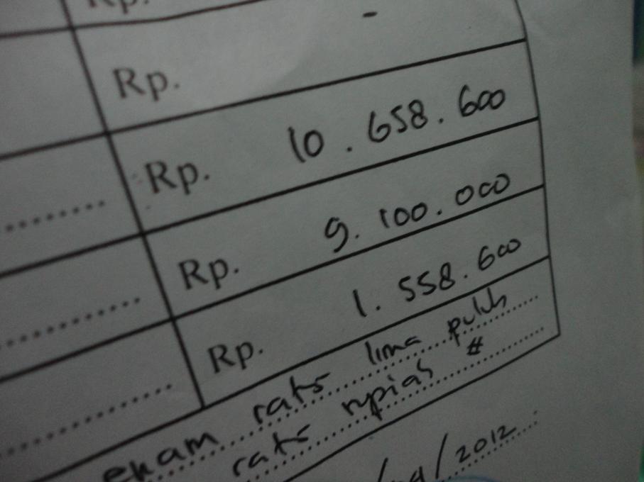 Total Biaya Melahirkan