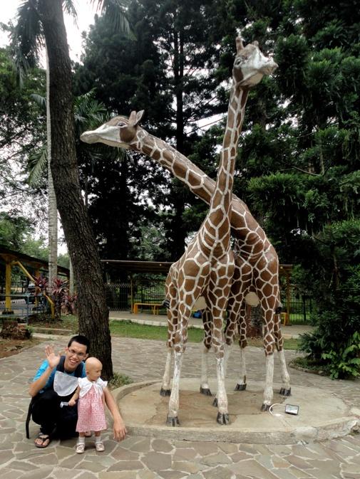 Di depan baby zoo